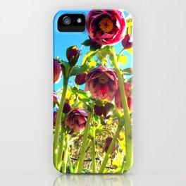 Bright Hellebores iPhone Case