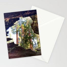 View of Giant Sequoias from Inside a Fallen Sequoia Stationery Cards