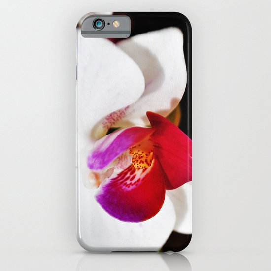 White and Purple Orchid iPhone & iPod Case