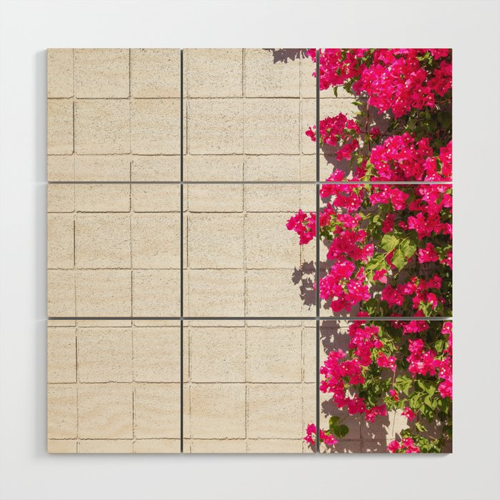 Bougainvilleas and White Brick Wall in Palm Springs, California Wood Wall Art