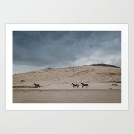 Wild Horses on the Coast Art Print