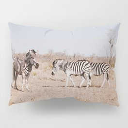Hello Zebras Pillow Sham