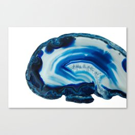 Blotchy Blue Brain Agate Slice Canvas Print