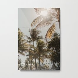 Miami palmtrees   Fine Art Travel Photography Metal Print