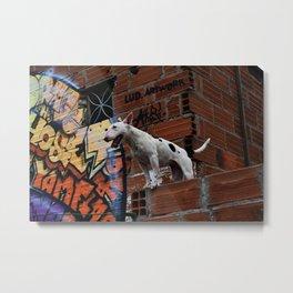 Dogs day Metal Print