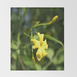 Carolina Jasmine Single Bloom In Sunlight Throw Blanket