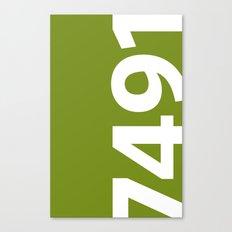 7491 Canvas Print