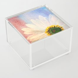 A New Perspective Acrylic Box