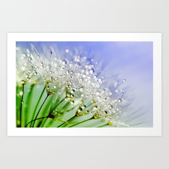 Sparkling drops on a Dandelion- Abstract blue flower Art Print
