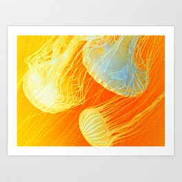 Jellyfish of the Orange Marmalade Hoodie Art Print
