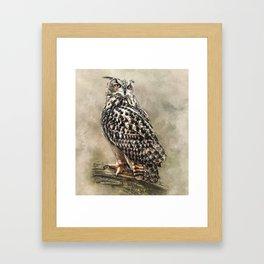 Eagle Owl Framed Art Print