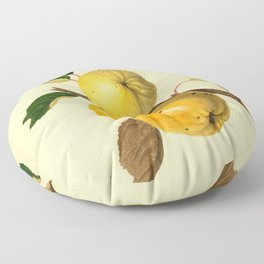 The Yellow Elliot Apple (1811) Floor Pillow
