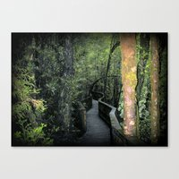 parks Canvas Prints featuring Franklin - Gordon  National Parks by Chris' Landscape Images & Designs