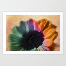 sunflower dream -01- Art Print