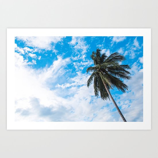 Palm Tree under Blue and White Art Print