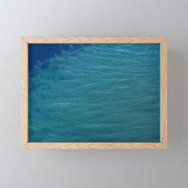 Fishes in a school Framed Mini Art Print