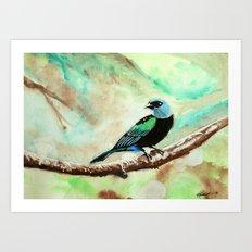 Little Birds 1/30 by Veron Ramsawak Art Print