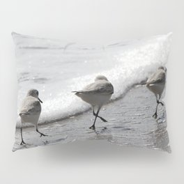 Sandpipers Birds on the Beach Pillow Sham