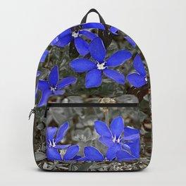 Spring Gentian Flowers Flowering Alpine Meadow Backpack