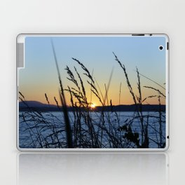 Sunset Sea Grass Laptop & iPad Skin