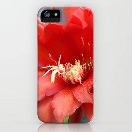 Jungle Cactus Red iPhone Case