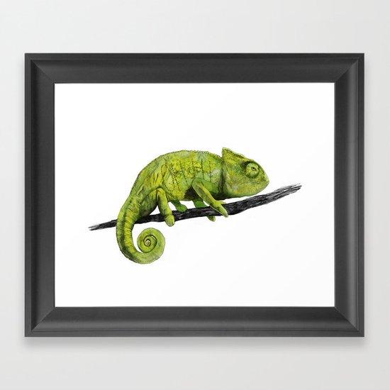 Nice Chameleon Framed Art Print