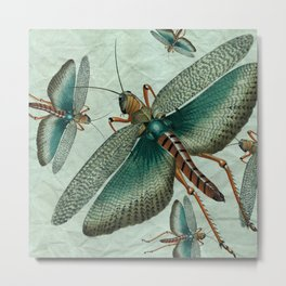 Vintage Grasshopper on Light Teal Metal Print