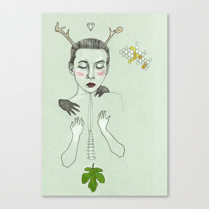 kış (winter) Canvas Print