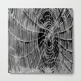 Black and White Spiders Web Metal Print