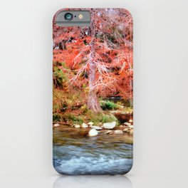 Fall Along the Guadalupe iPhone Case