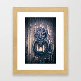 Lionhead Framed Art Print