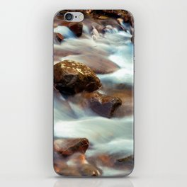 Panther Branch Creek 3 iPhone Skin