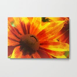 Summertime199 Metal Print