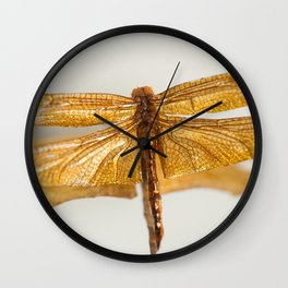 Gilt Dragonfly Wall Clock