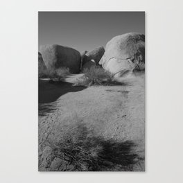 Desert Rocks Canvas Print