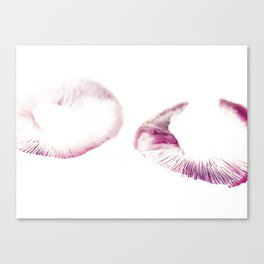 Mushroom Project - 3 Canvas Print