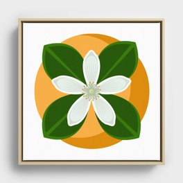 Orange Blossom Framed Canvas
