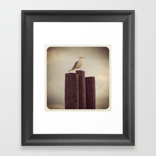 INSTAGRAM ART -Erie Gull- Framed Art Print