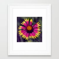 blanket Framed Art Prints featuring Blanket by Kam Minatrea