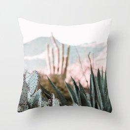 Cold Desert Throw Pillow