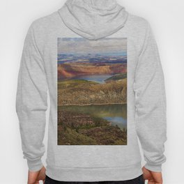 Millions of Years in Color Hoody