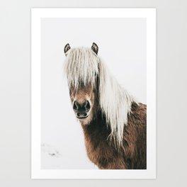 Nordic Horse Art Print