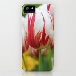 Red & White Tulip iPhone Case