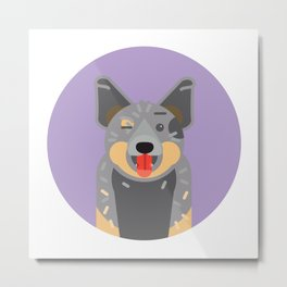Parko the blue heeler! Metal Print