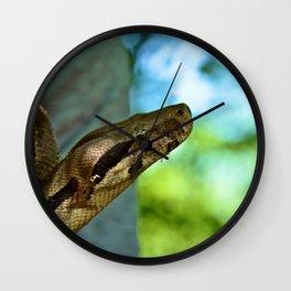 The Boa Constrictor  Wall Clock