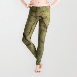 Leaf´s veins Leggings