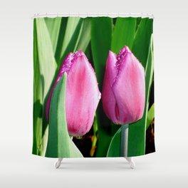 Tulips in the Rain Shower Curtain