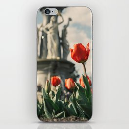 Tulips in front of a fountain. iPhone Skin