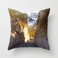 mexican Throw Pillows featuring Mexican desert by lennyfdzz