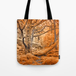 Glowing Amber Forest Tote Bag